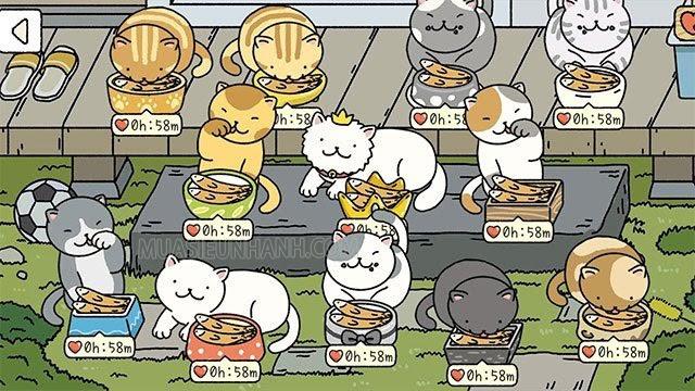 Hãy mở khóa hết 12 con mèo để nhận được nhiều tim mỗi ngày nhé