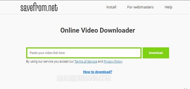 Dán link video cần tải vào ô trắng rồi nhấn vào chữ download ở bên cạnh