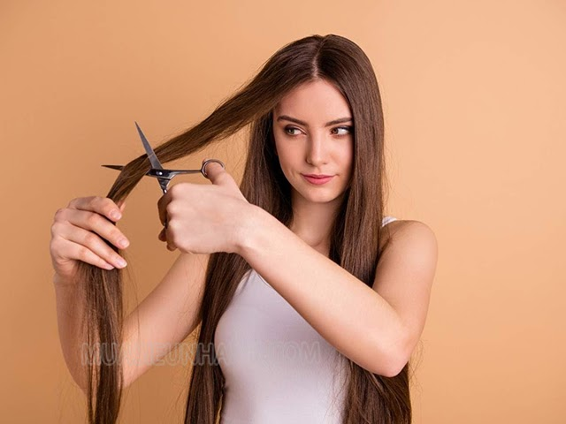 Nên cắt tóc ngày nào