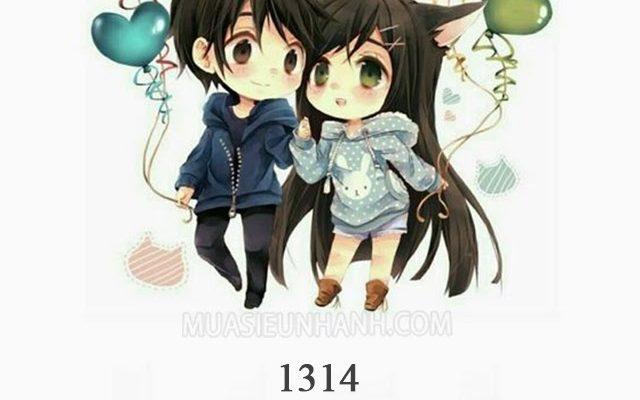 1314 là gì