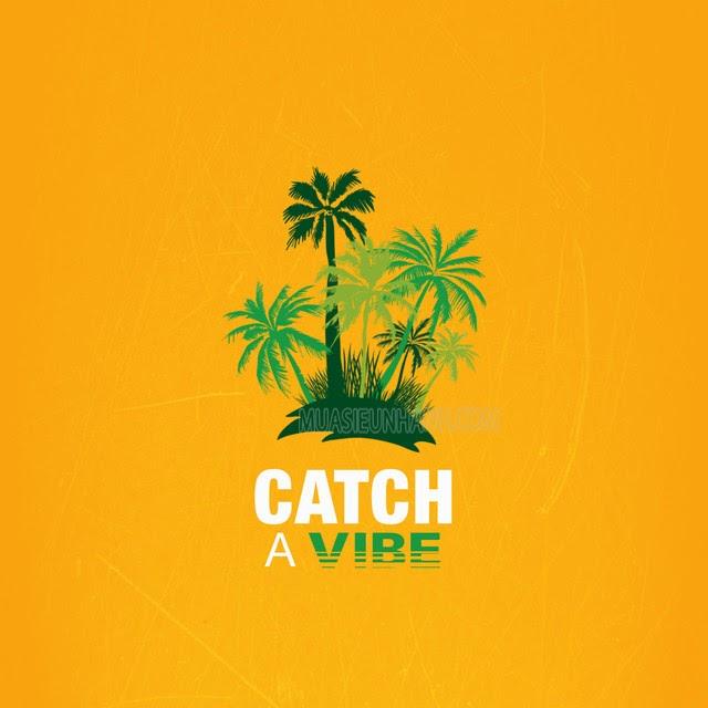 Catch the vibe là gì?