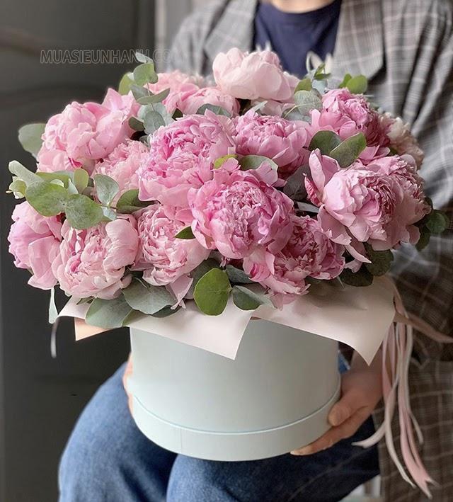 Mẫu đơn được coi là hoàng hậu của những loại hoa đẹp nhất thế giới