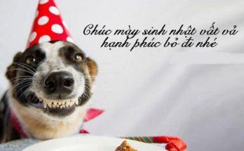 chúc mừng sinh nhật bạn thân lầy