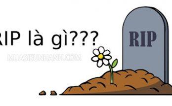 RIP là gì vậy?